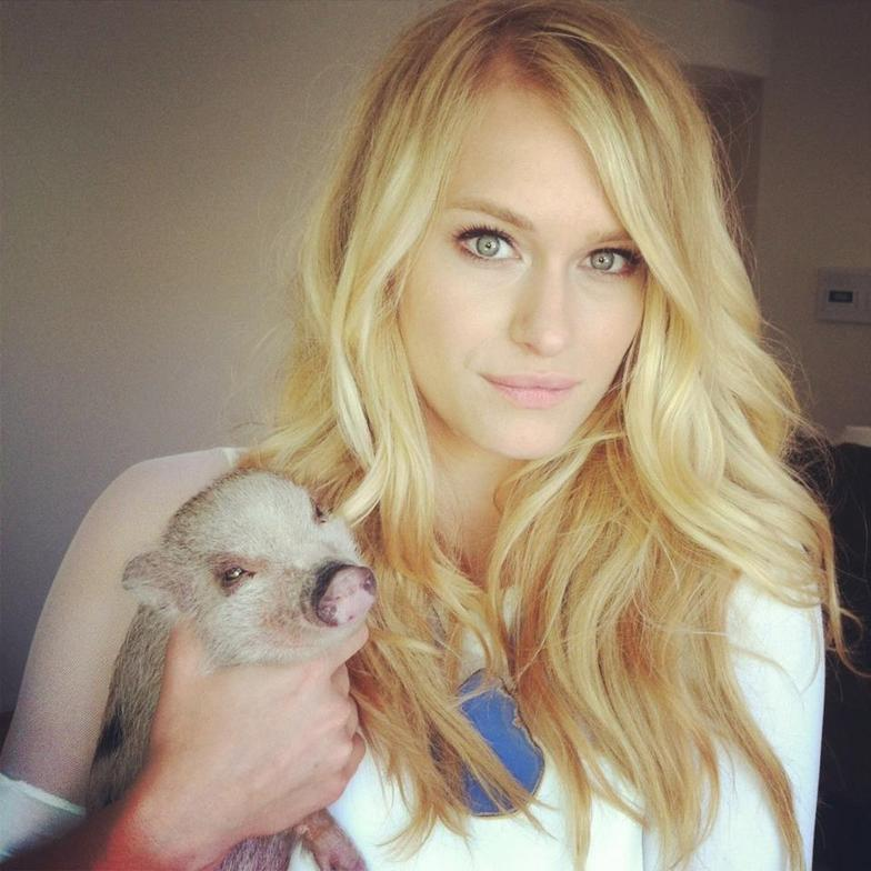Celebrities with mini pigs as pets
